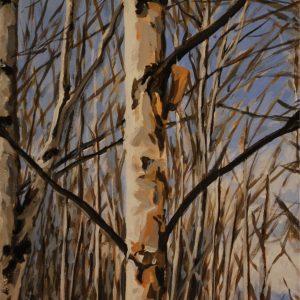 birch gift 4