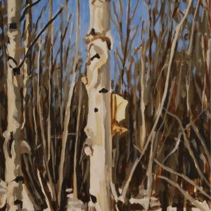 birch gift 6