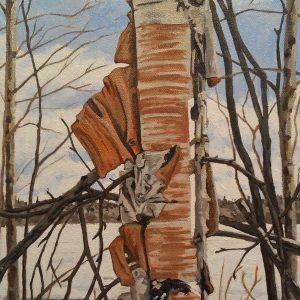 lynns birch